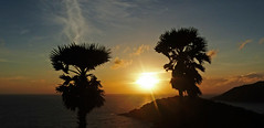 Phuket Sunset 01 (brentflynn76) Tags: travel trees sunset sky sun holiday beach water silhouette clouds skyscape landscape thailand photo scenic palm cape phuket promthep
