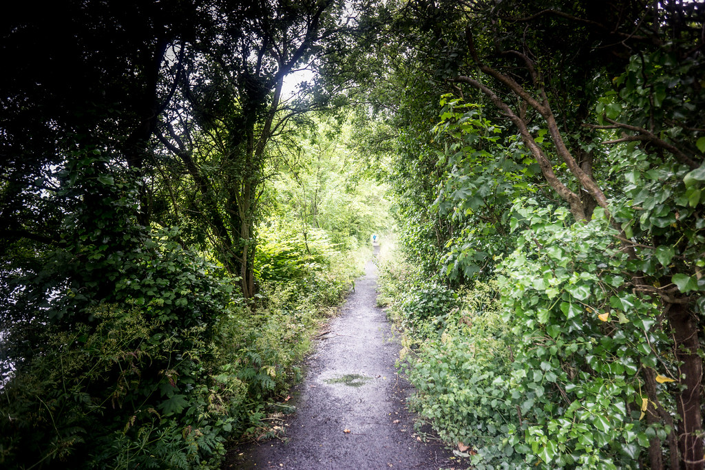 IMAGES FROM THE STREETS OF LIMERICK - WALKWAY NEAR THE SHANNON BRIDGE