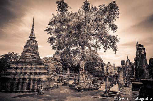 Wat Mahathat Boom