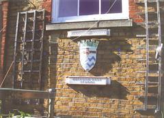 ted's school