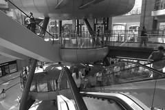 Escalators, Victoria Square, Belfast (John D McDonald) Tags: building architecture mall geotagged escalator shoppingcentre belfast shoppingmall northernireland ni escalators mcdonald victoriasquare ulster johnmcdonald victoriasquaremall jmcdonald victoriasquarebelfast johndmcdonald victoriasquareshoppingmall jdmcdonald