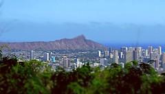 exploring Oahu (N@ncyN@nce) Tags: city vacation beach beautiful skyline architecture skyscraper relax hawaii downtown paradise cityscape pacific waikiki oahu exploring landmarks tourist resort pacificocean crater highrise diamondhead tropical honolulu sights makaha hawaiianprincess