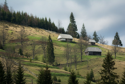 Carpathian Village