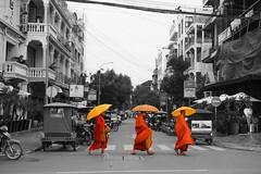 DSC02235bw (OwLek) Tags: street orange cambodia monk rx100
