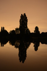 Evening (saddy_85) Tags: camera camping light sunset sun tree thames night river dark photography boat duck nikon board paddle watersports danesfield d5100