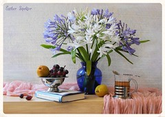 Everyday Bliss (Esther Spektor - Thanks for 7 millions views..) Tags: pink flowers blue summer stilllife food white color reflection green art texture glass leaves yellow metal fruit composition scarf canon silver book golden stem beige tea availablelight burgundy cluster lavender stilleben spoon bowl fabric pear periwinkle vase drape bouquet bliss grape everydaylife tabletop bodegon cobalt naturemorte artisticphotography naturamorta naturezamorta creativephotography glassholder estherspektor
