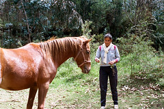 Horse Whispers (The Frotographer) Tags: life vacation amigos travelling southamerica children quito ecuador shadows chiquitos working happiness nios spanish learning teaching castellano otavalo cascada baos latinomerica