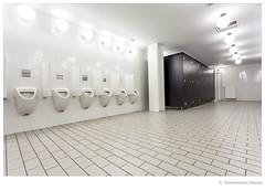 urinal and toilet (Den Boma Files) Tags: white male men pee public water comfortable modern closet tile ceramic bathroom design floor interior room toilet nobody row clean indoors wc wash sanitary chrome restroom urine flush urinal urinals porcelain hygiene lavatory gentlemen hygienic