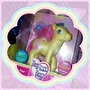 Playing with some of my mint in box toys. (TamaraKrull) Tags: square squareformat bubblegum mib mlp mylittlepony prettypop mintinbox iphoneography instagramapp uploaded:by=instagram
