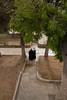 Un brin de causette (Erminig Gwenn) Tags: trees woman tree saint canon square temple eos israel alley women palestine femme muslim islam 4 jerusalem hijab talk mosque des arabic mount holy arab adobe arabe esplanade mont parc occupied territories blessed sacré femmes bavardage lightroom hidjab 6d palestinian allée jérusalem discussions musulman israël tchador voilées voilée 5176 uslim palestinien cisjordanie territoires occupés nocommercialuse mosquées palestiniens rbres canoneos6d commercialuseisprohibited utilisationcommercialeinterdite comérage pasdutilisationscommerciales utilisationscommercialesinterdites