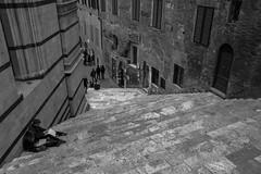 Duomo di Siena (Andrea Vigoni) Tags: bw italy white black scale stairs canon eos italia cathedral e tuscany 7d siena duomo toscana bianco nero