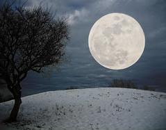 full snow moon (LotusMoon Photography) Tags: moon fullmoon february photomanipulation photoshop winter sky photoart fullsnowmoon artistic annasheradon lotusmoonphotography