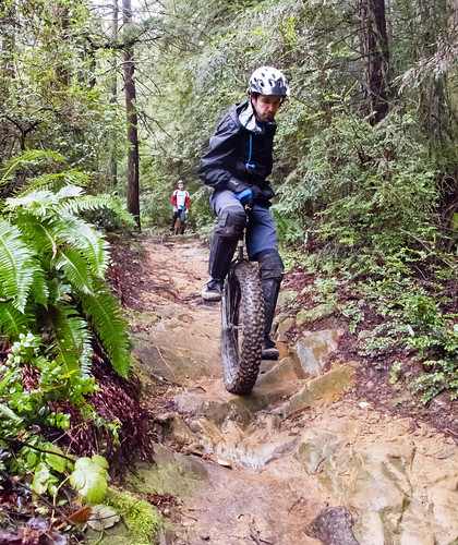 Redwood MUni