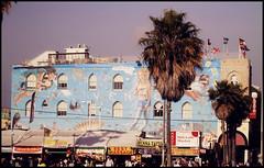Venice Beach (by Mao Ramirez) Tags: california travel la losangeles sandiego santamonica palmsprings venicebeach