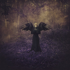 for fear of falling (brookeshaden) Tags: fog forest flying wings transformation disney falling magical storytelling enchantedforest fineartphotography youngadultfiction maleficent purpleleaves darkfairytale brookeshaden