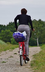 I want to ride my bicycle (osto) Tags: bike bicycle denmark europa europe sony bicicleta zealand bici scandinavia danmark velo fahrrad vlo slt rower cykel a77 sjlland osto alpha77 osto july2014 fietssykkel