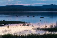 Kloster (Olger Ernst) Tags: sunset nature cloudy sweden reserve dalarna kloster zweden naturreservat hedemora
