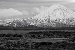 July 2014 05 (C & R Driver-Burgess) Tags: road winter mountain lines power desert plateau nz pylons volcanic ngauruhoe