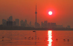 Sunrise Glistening Reflections (Greg's Southern Ontario (catching Up Slowly)) Tags: morning red sun toronto canada skyline sunrise reflections nikon colorful colourful glistening reddawn reflectivewater nikoncoolpixp510