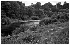 River Tees , Barnard Castle . (wayman2011) Tags: trees bw canon bridges churches rivers grasses countydurham longexposures teesdale barnardcastle rivertees thegreenbridge canon50d bw110
