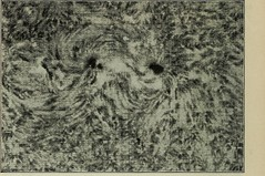Anglų lietuvių žodynas. Žodis spectroheliograph reiškia Spektroheliografas lietuviškai.