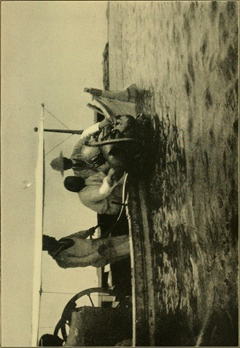 "Image from page 178 of ""The gateway to the Sahara; observations and experiences in Tripoli"" (1909)"