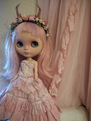 A Pink Princess......Vermont