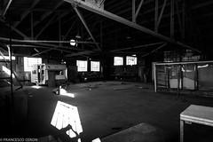 (Francesco   Ceron) Tags: california blackandwhite usa flickr unitedstatesofamerica bn vacanza efs1022mmf3545usm canoneos7d fotofrancescoceron