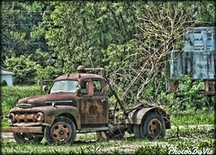 Pulled From The Weeds (Photos By Vic) Tags: old ford truck vintage junk rust antique rusty vehicle wreck