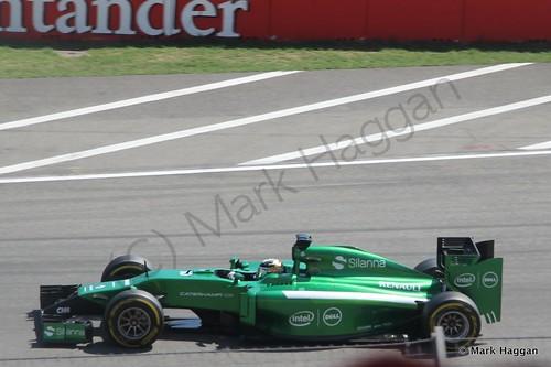 Kamui Kobayashi in Free Practice 3 ahead of the 2014 German Grand Prix