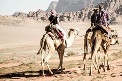 Wadi Rum, Jordan (BestSemester) Tags: desert wadirum jordan camel studyabroad bedouin middleeaststudiesprogram