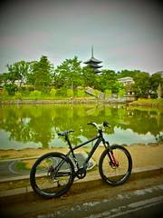Local, Nara, Japan. (kinkicycle.com) Tags: bicycle japan japanese cycling fuji bicycles nara kofukuji