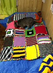 Janis Dyer (The Crochet Crowd) Tags: mikey yarn blanket afghan cathy redheart challenge throw supersaver crochetsquares crochetchallenge thecrochetcrowd michaelsellick freeafghanpattern freecrochetvideos stitchcation