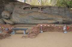 Laying Buddha Polonnaruwa