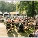 jazz bruno antwerpen middelheim 2014 fotograaf jazzmiddelheim bollaert wwwsterrennieuwsbe