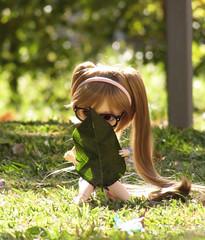 Trouvé ! (DidiTisseDesLiens (AB)) Tags: doll wig pullip didi clémence stica