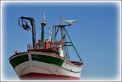 255/365 Hacia alta mar (Txemari Roncero) Tags: sea beach boat mar nikon barco pesca guardamar project365 guardamardelsegura proyecto365 nikond7000