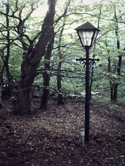 Narnia (KMeeow) Tags: trees light forest post magic narnia magical