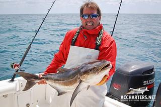 Captain Allen Mills - Amelia Island, FL