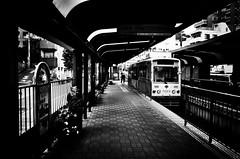 Sunday Afternoon (Yoshi T. (kagirohi)) Tags: railroad blackandwhite bw monochrome station japan train tokyo tram railway  gr streetcar  ricoh waseda arakawa toei  toden     arakawaline