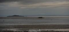 On the beach (Ed.ward) Tags: people cloud holiday beach water river island scotland sand firthofforth burntisland inchkeith 2014 inchkeithisland nikond700 nikonafnikkor85mmf18d