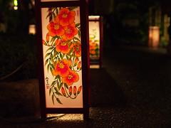 P9271754 (prelude2000) Tags: japan tokyo cosina  lantern asakusa nokton voigtlnder  25mm  f095 sensouji