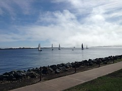 Sailboats in San Diego harbor (Greying_Geezer) Tags: 2017 shelterisland sandiego california