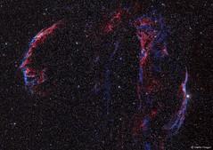 Veil Nebula Complex (Supernova Remnant) (AstroSocSA) Tags: nebula supernovaremnant dark sagittarius people