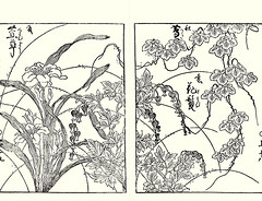 Orange day-lily, bleeding heart and Japanese creeper (Japanese Flower and Bird Art) Tags: flower orange daylily hemerocallis fulva hemerocallidaceae bleeding heart dicentra spectabilis papaveraceae creeper parthenocissus tricuspidata vitaceae katsumasa yoshimura kano woodblock picture book japan japanese art readercollection