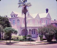 Galveston Victorian Houses (Stabbur's Master) Tags: palmtree victorianarchitecture victorianhouse victorians galvestonvictorianhouses galveston texas lonestarstate frederickbeissnerhouse eastendhistoricaldistrict 1702ball