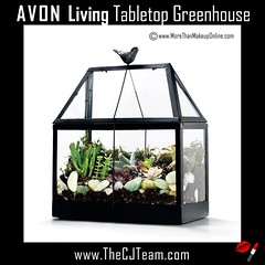 Avon Living Tabletop Greenhouse (cjteamonline) Tags: avon avonliving avonlivingspringstyle avonlivingtabletopgreenhouse avonspecialsale avoncom buyavononline gogreen new organize personaldelivery representative sale simplespringstyle style tabletopgreenhouse thecjteam yourhomeistheplacetobe