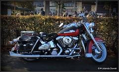 Harley-Davidson (Jolanda Donné) Tags: harleydavidson motorrad konstanz oktober oktober2014 29102014 canoneos650d