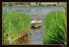Insel Poel / Kirchdorf / Mecklenburg-Vorpommern (berndwhv) Tags: deutschland ostsee landschaften mecklenburgvorpommern kirchdorf inselpoel