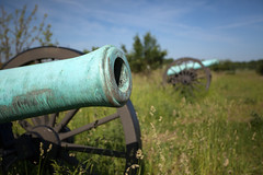 Wild Cannons (T-3 Photography) Tags: history bronze rural md gun maryland civilwar weapon cannon napoleon artillery historical battlefield armament